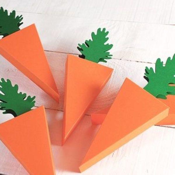 boite-carotte-